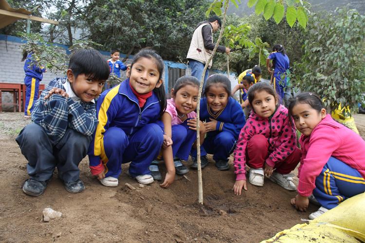 Nuevas áreas verdes para el Colegio del C.P.R. Guayabo - Pachacámac